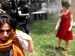 Resistance gezi occupygezi occupy gezi gezi parkı direnişi Türkiye