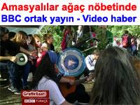 Amasyalılar ağaç nöbetinde