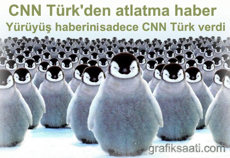 CNN Türk büyük penguen yürüyüsü